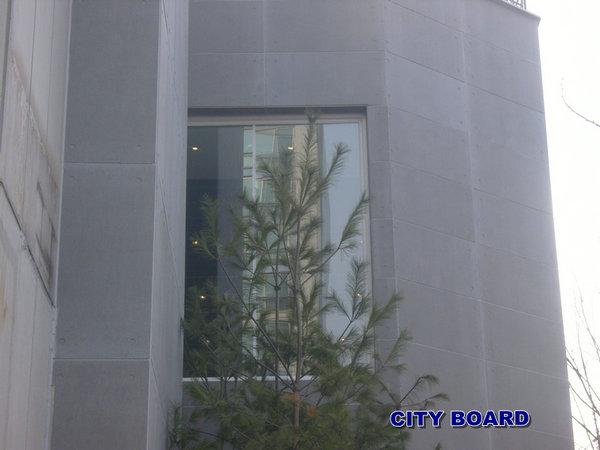 外墙挂板 (7)